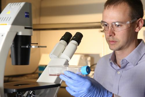 Photo of Researcher in Lab