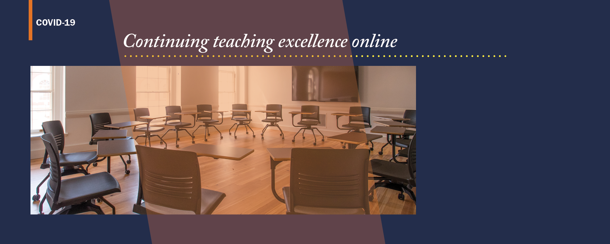 Continuing teaching excellence online